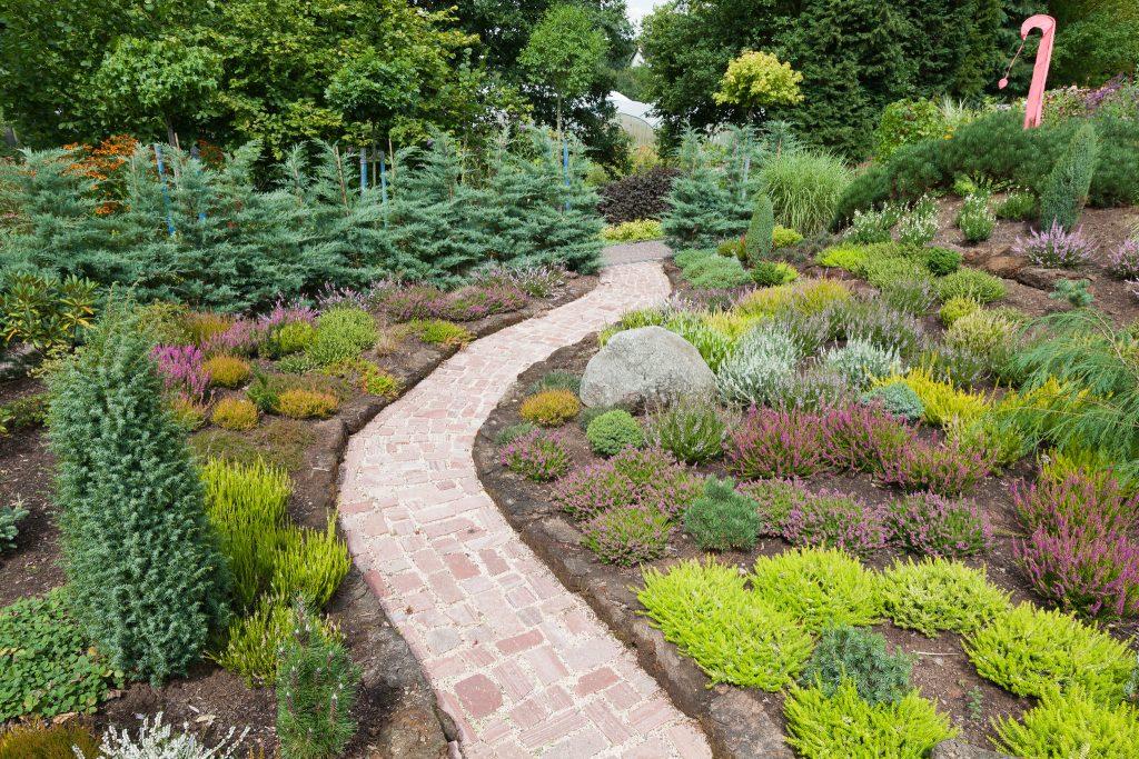 Unser Heidegarten im August
