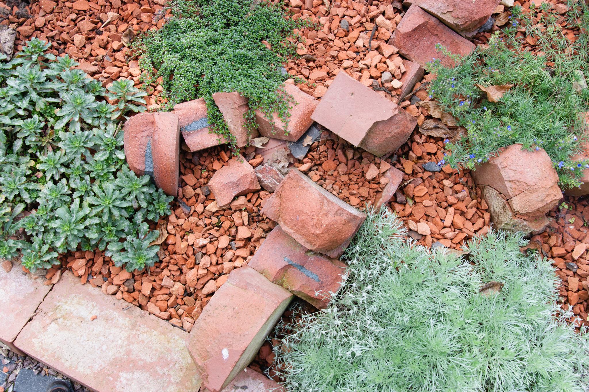 Ehrfürchtig Kleiner Steingarten Schema