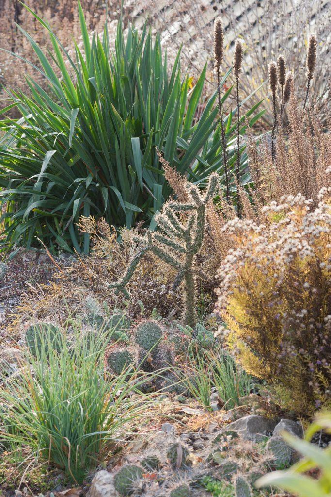 Auch Ende Oktober ist der Garten noch attraktiv.