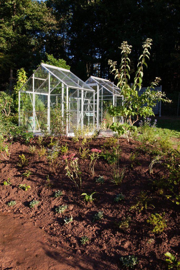 Die Bepflanzung ist fertiggestellt.