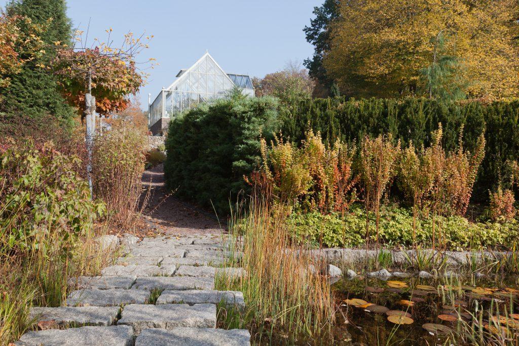 Am Teichgarten im Herbst
