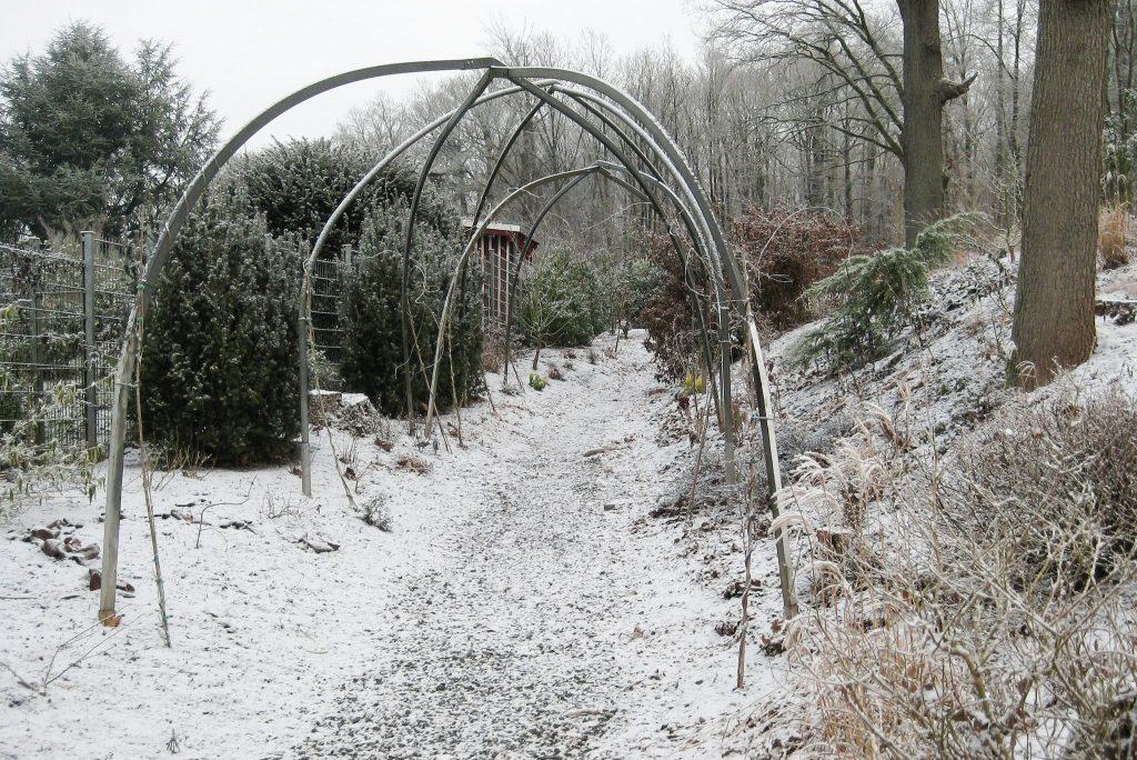 Der Winter hält auch im neuen noch im Bau befindlichen Mustergarten Einzug. An den Metallbögen eines alten Foliengewächshauses soll sich später Blauregen (Wisteria) emporschlingen.