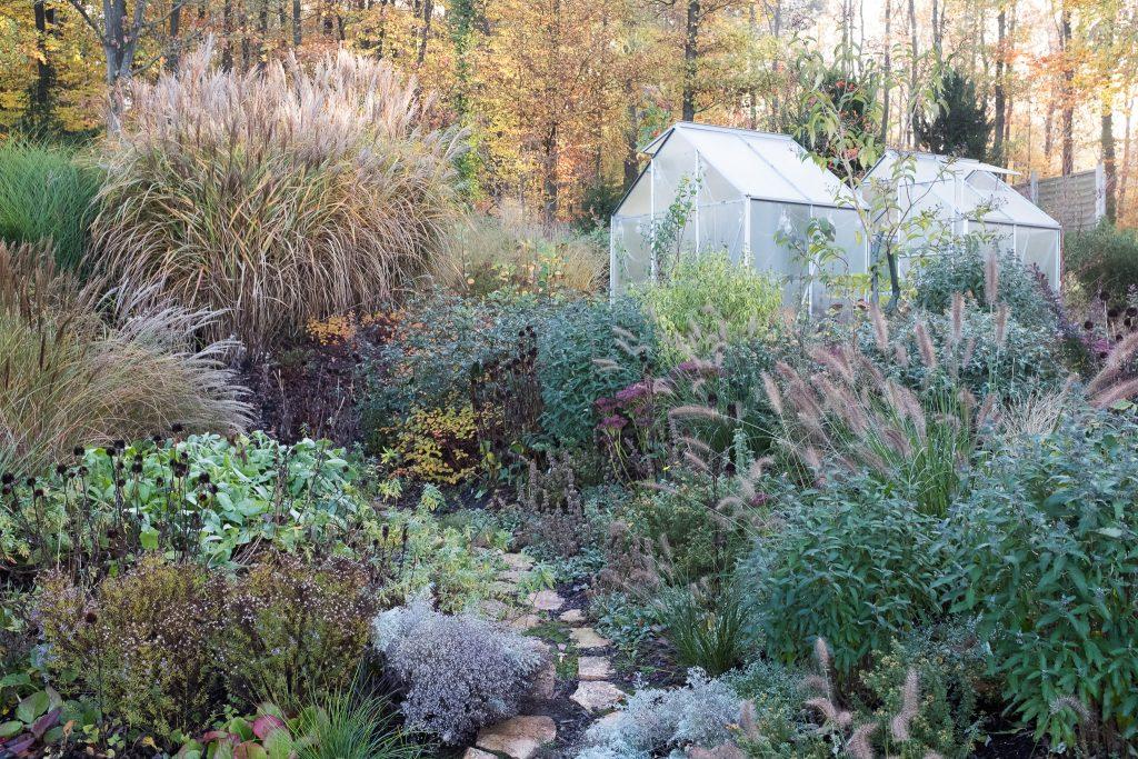 Der Garten Anfang November