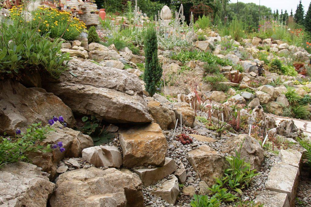 Der Steingarten im Juli