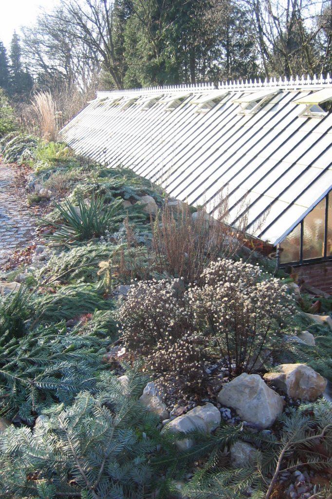Reisig dient als Winterschutz für empfindlichere Pflanzen.