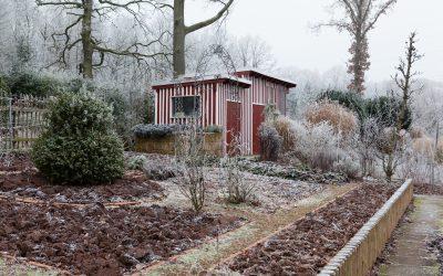 Gefrorene Gärten