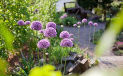 Der Backsteingarten