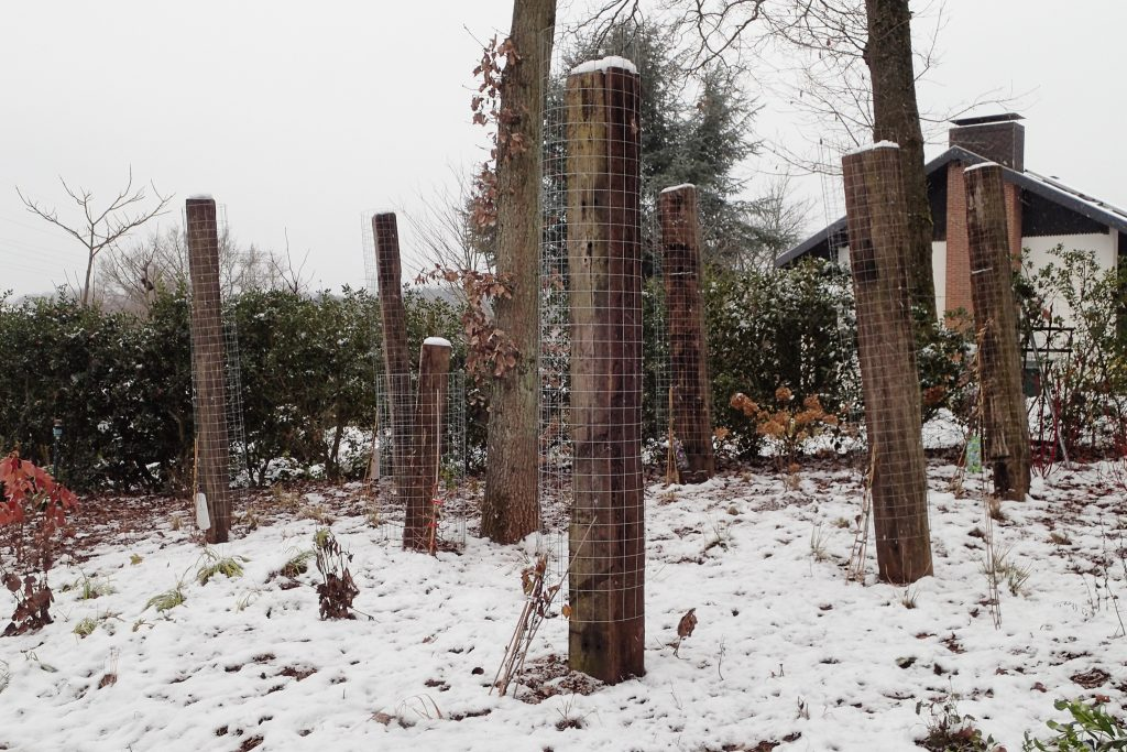 Was hat sich dieses Jahr in Langhirts Gärten getan? – Ein Rückblick