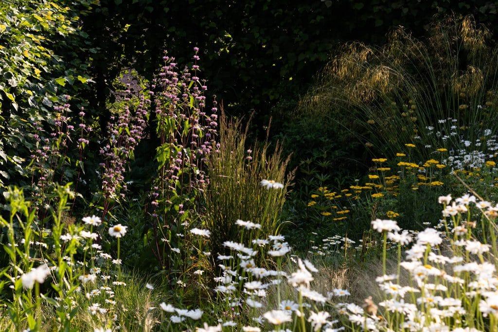 Der Garten am Denkmal I