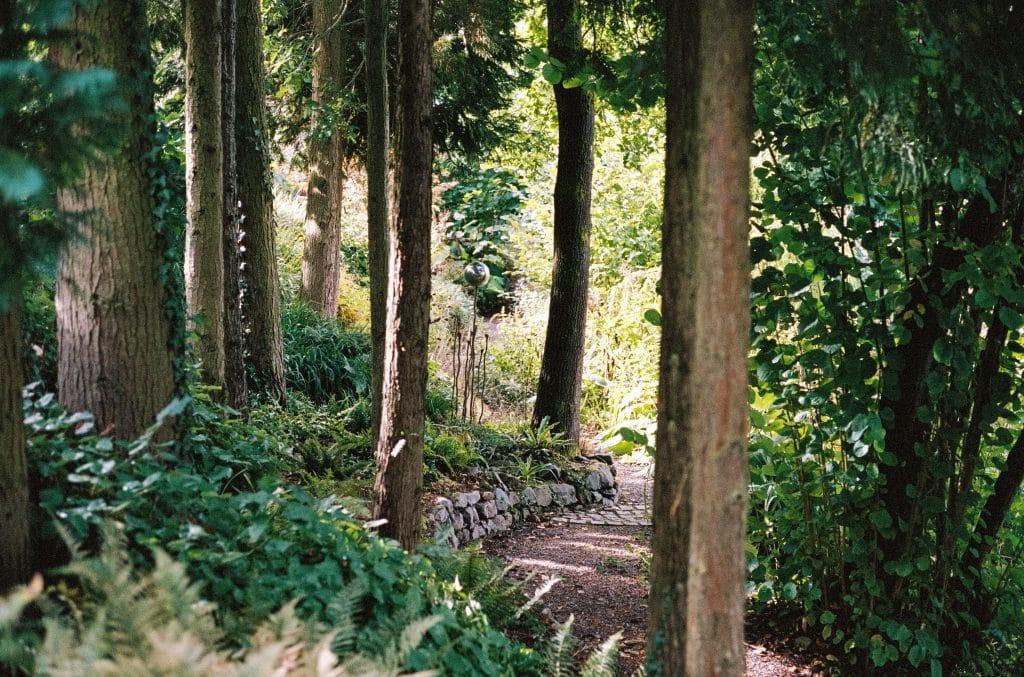 Waldgarten 2.0